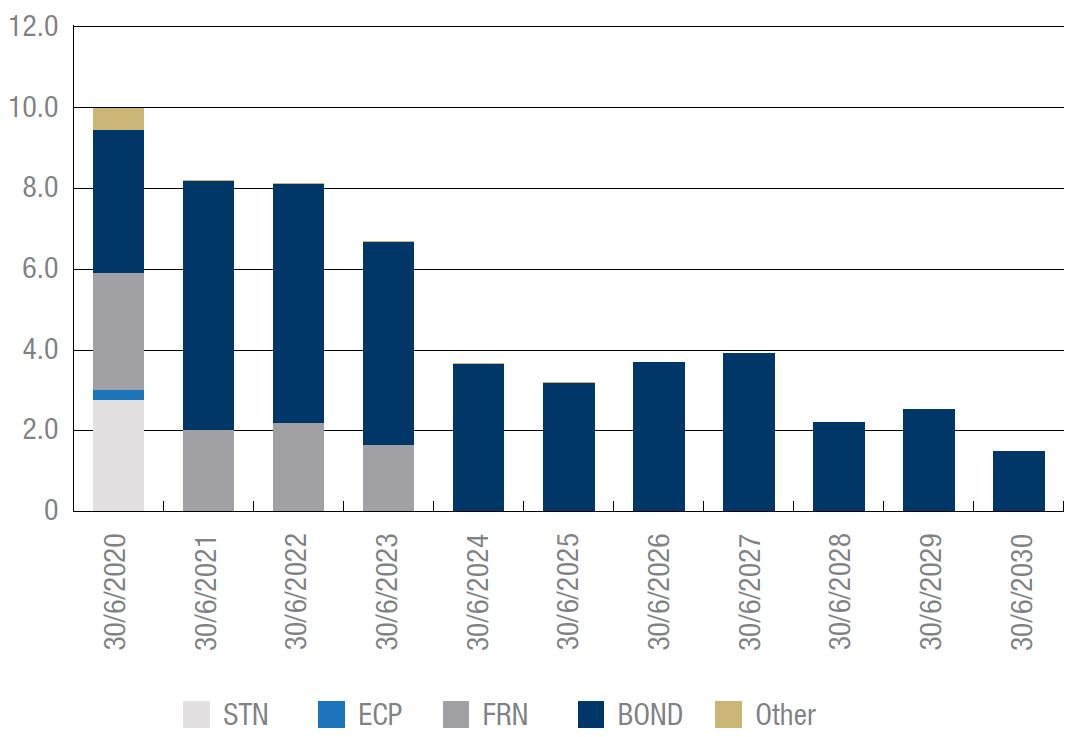 Maturity Profile by Financial Year end, at 30 June 2019